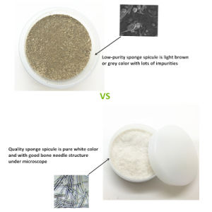 Certificated Cosmetic Grade Sponge Spicule Manufacture Cosmetic Material Supplier pictures & photos