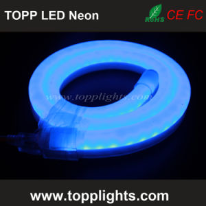 High Bright 80LED/M 100LED/M Waterproof Flex LED Neon Light pictures & photos