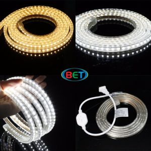 SMD LED Strip Light White LED Ribbon Lights pictures & photos