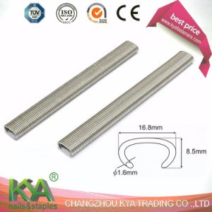 516ss100 Stainless Steel 304 Hog Ring Staples pictures & photos