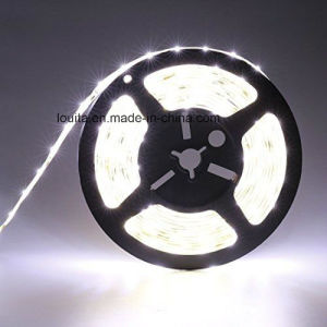 SMD 2835 60LEDs/M LED Strip Light pictures & photos