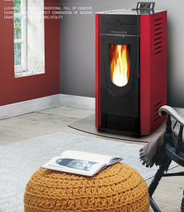 Biomass Stove Wood Burning Stove (CR-04) pictures & photos