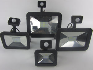 30W Motion Sensored Floodlights Outdoor Floodlights with Motion Sensor pictures & photos