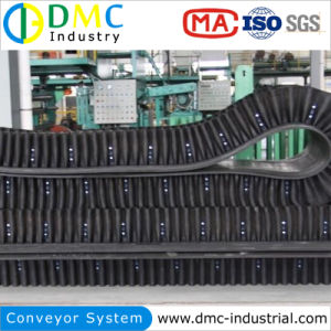 Raised Edge Conveyor Belt pictures & photos
