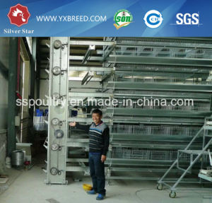 Professional Design Layer Chicken Cage for Poultry Farm pictures & photos