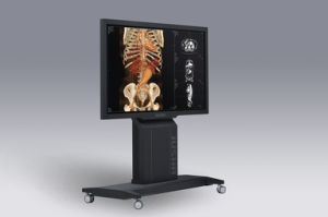 (JUSHA-SUPER84T-AIO) All in One Medical Monitors for Diagnosis, Medical Manufacturer From China pictures & photos