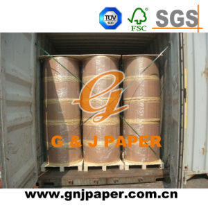 Virgin Wood Pulp NCR Carbonless Paper in Roll Stock pictures & photos