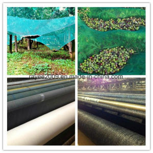 HDPE Knitted UV Resistant Agricultural Olive Collection Harvest Net pictures & photos
