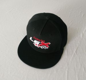 Good Quality 5 Panel 100%Cotton Snapback with Custom Logo pictures & photos
