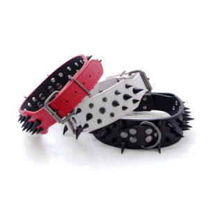 Pet Supplies with Rivet Leather Dog Collar pictures & photos