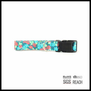Fashion Pattern Eco Friendly Canvas Pet Dog Collar pictures & photos