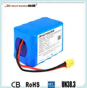 Jingnoo Lithium-Ion Battery Pack 10V 11ah pictures & photos