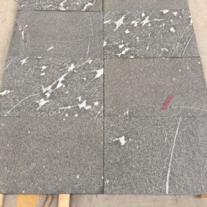 Black Granite with White Color Veins (Polished, Flamed, Brushed, Bush hammered etc) pictures & photos