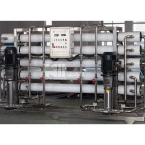 0.5-50 T/H Purification Plant pictures & photos