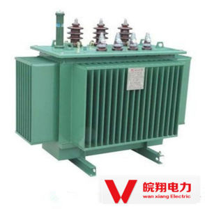 Oil-Immersed out-Door Transformer / Three Phase Transformer pictures & photos