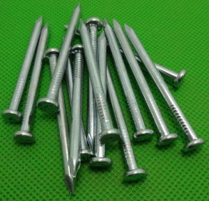 Common Nail/ Stainless Steel Nail Wholesale pictures & photos