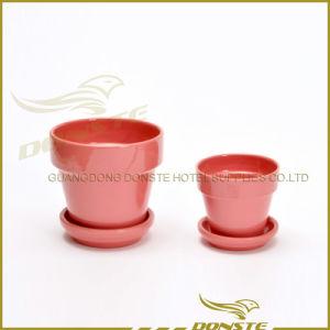 Colourful Flower Pot