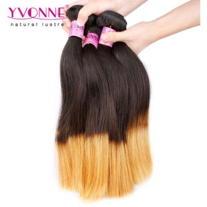 Two Tone Color T1b/30 Peruvian Ombre Human Hair pictures & photos