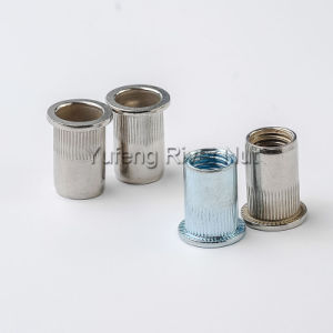 Carbon Steel/Stainless Steel/Aluminum Rivet Nut Flat Head /Small Head/Countersunk Head pictures & photos