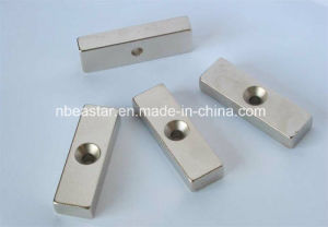 Permanent Neodymium/NdFeB Magnet with SGS RoHS Certification pictures & photos