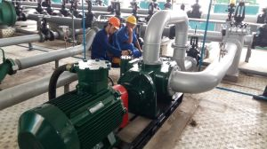 Engineers in China′s National Oil Storage Warehouse Commissioning pictures & photos