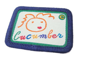 Cunstomized Top Quality Merrow Woven Label Knitted Label Woven Logo pictures & photos