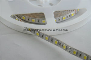 LED Strip Decorative Light with High Lumen pictures & photos