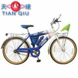 Factory Direct Sale Unique in Form Bicycle Bike for Adults pictures & photos