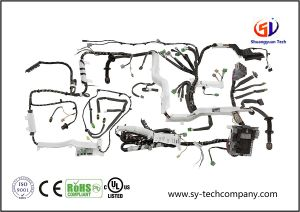 Wire Harness for Automobile pictures & photos