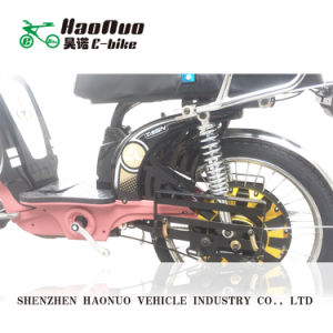 Ce Approved Cheap Electric Bike with Pedal From China pictures & photos