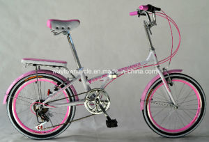 Folding Bike (WT-20409) pictures & photos