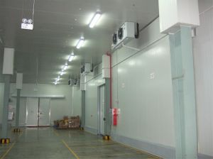 PU Panel Cold Storage Room pictures & photos