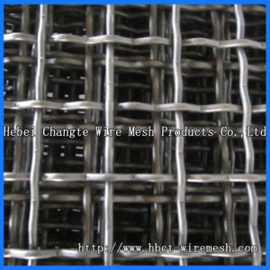 Hebei Changte Factory Product Carbon Steel Crimped Wire Mesh pictures & photos