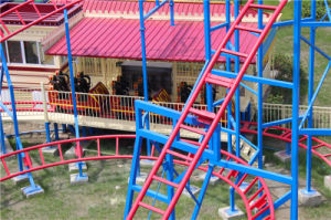Amusement Rides Hot Equipment Roller Coaster pictures & photos
