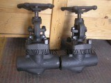 Forged Globe Water Valve Store pictures & photos