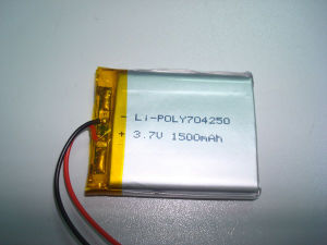 Li-Poly Battery (704250)