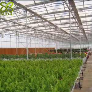 Cheap Galvanized Agricultural Greenhouses pictures & photos