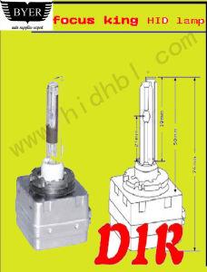 HID Xenon Lamp (D1R)