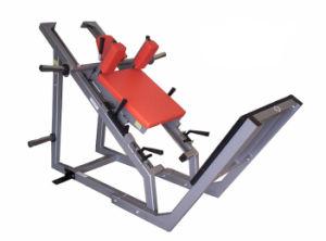 PRO Gym Equipment / Hack Squat (SM11) pictures & photos