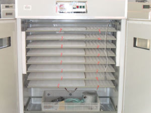 Large Automatic Chicken Egg Hatching Machine Commerical Incubator (RD-3168)