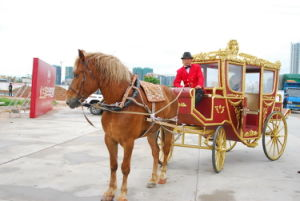 Royal Horse Cart (GW-HC033) pictures & photos