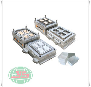 PP Box Covers Hot Runer Mould pictures & photos