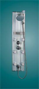 Aluminum Alloy Shower Panel (BG-6035)