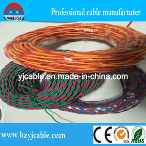 PVC Insulated Cable/Rvs Twisted Cable pictures & photos