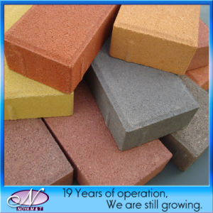 Water Permeable Brick Paver for Driveway, Paving, Walkway, Landscape, Patio pictures & photos