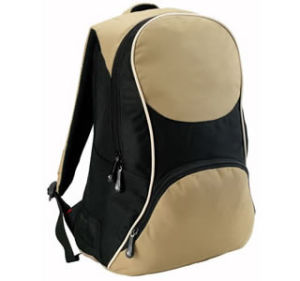 Sporting Backpack/Leisure Backpack/Travel Bag