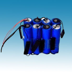 24V/10ah Lithium Iron Phosphate Battery Packs pictures & photos