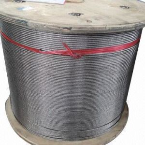 AISI304, 316 Top Quality Stainless Steel Wire Rope with ISO9001: 2008