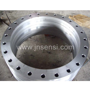 Carbon Steel Forged Flanges pictures & photos