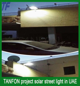 Popular Design Solar Garden Light, Solar LED Garden Light 30W 50W pictures & photos